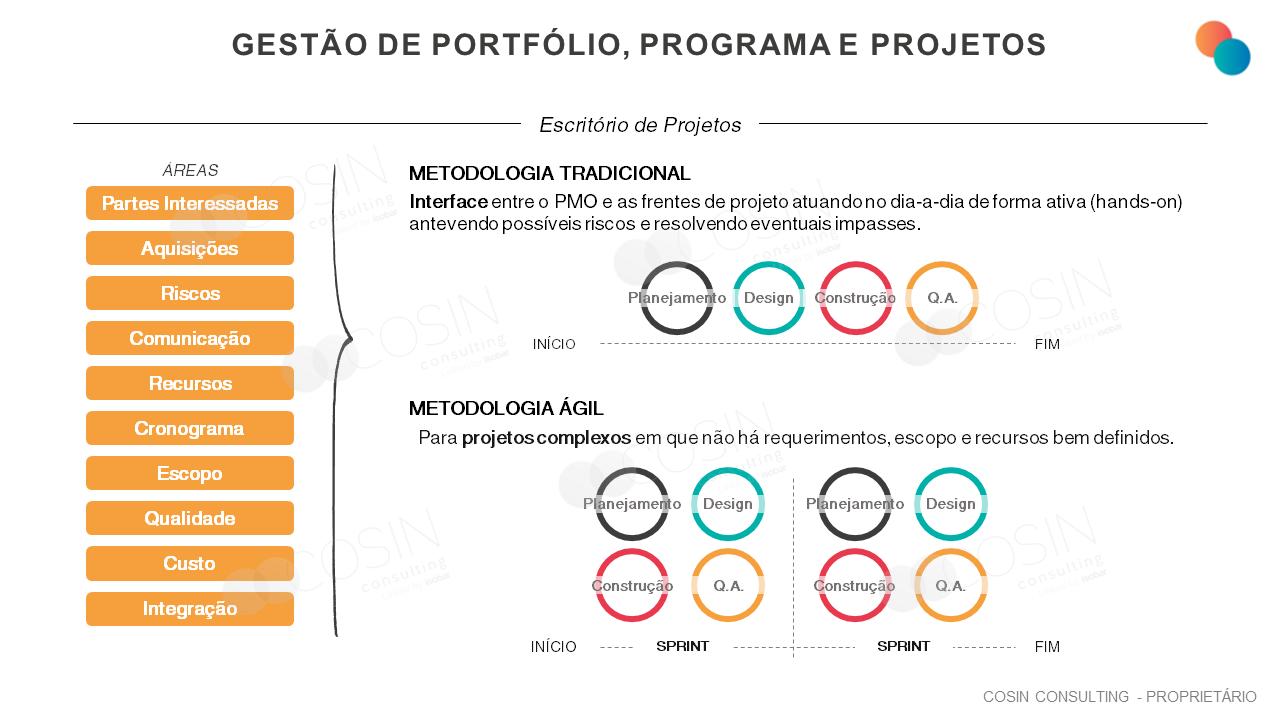Framework que ilustra a visão da Cosin Consulting sobre Gestão de Portfólio, Programa e Projetos