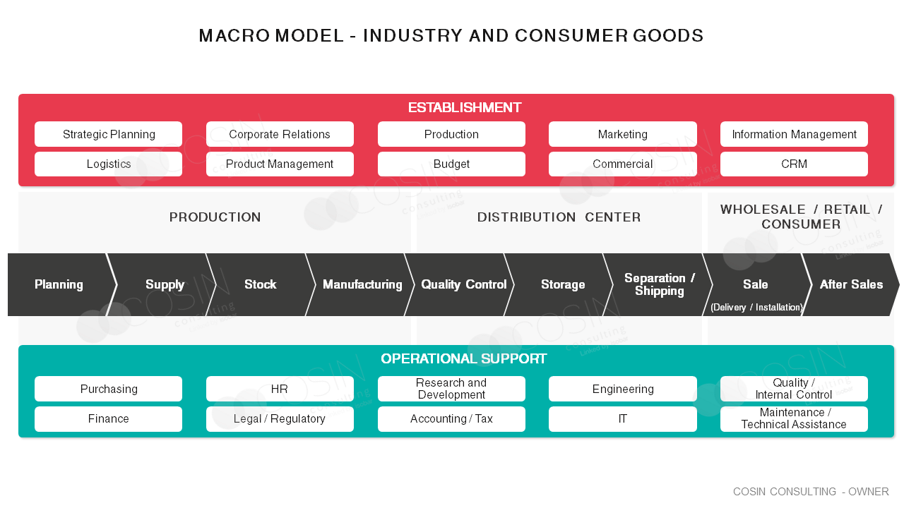 Framework that illustrates Cosin Consulting's vision of a macro model that goes from the industry to the final consumer.