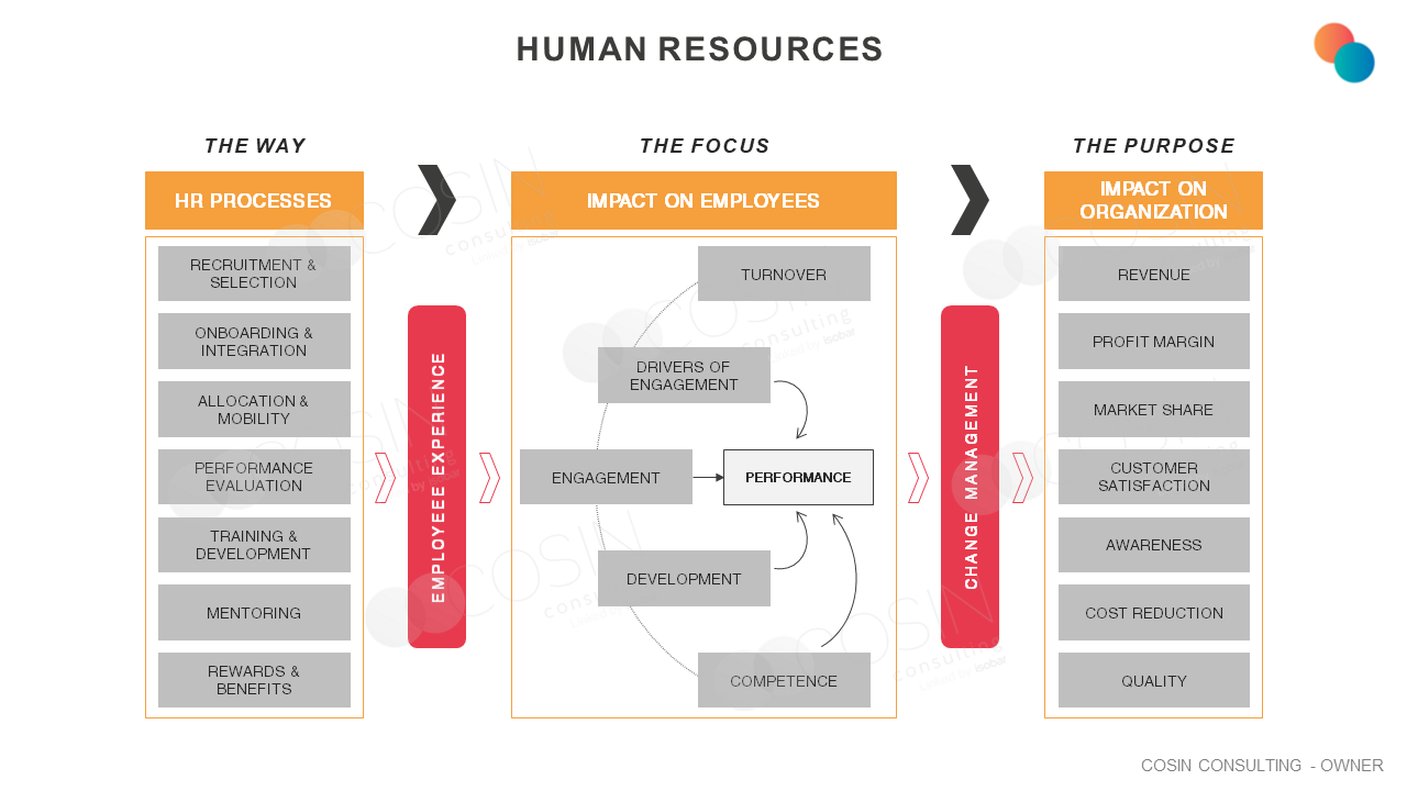 Framework that illustrates Cosin Consulting's vision on HR processes and impacts on employees and the organization.