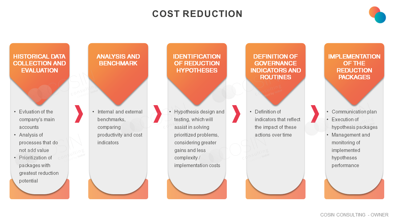 Framework that illustrates Cosin Consulting's vision on cost reduction (SG&A, OBZ Budget).
