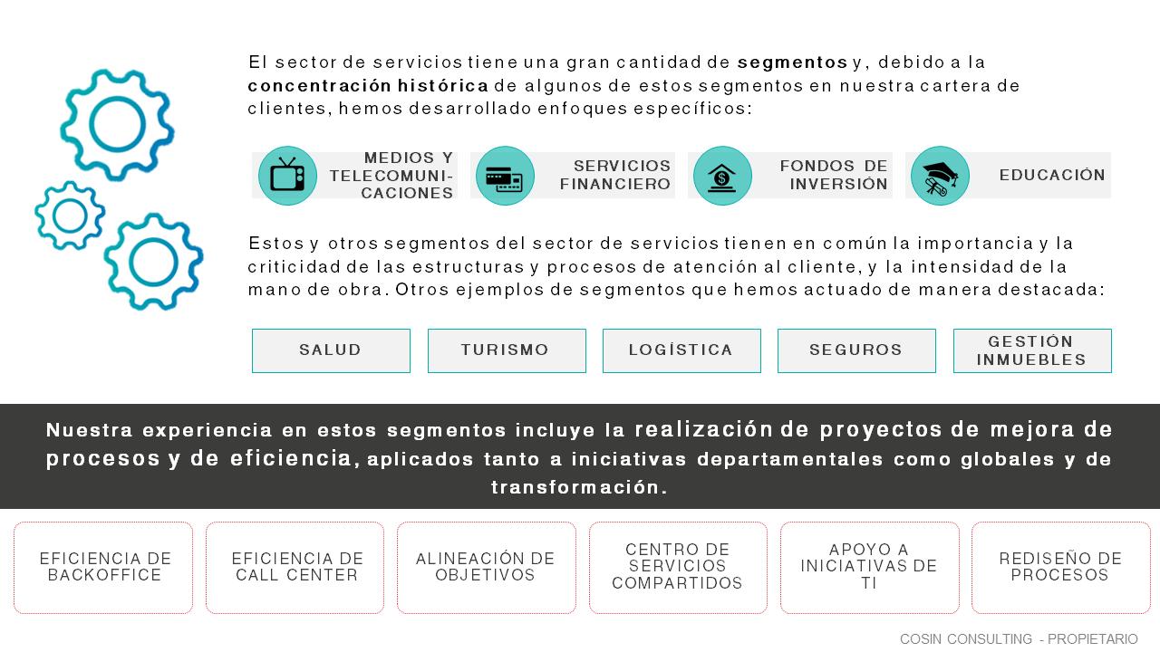 Framework que ilustra la visión de Cosin Consulting de Servicios