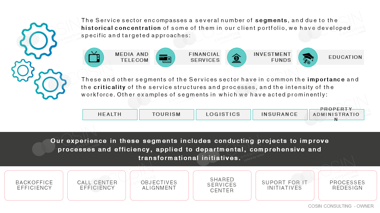 Framework that illustrates Cosin Consulting's vison on services